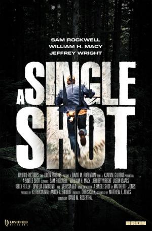 A_Single_Shot_poster_31092